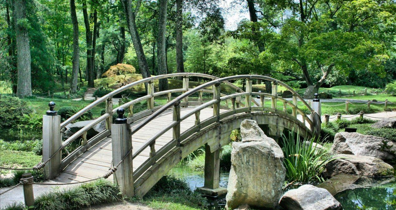 Comment faire un jardin japonais? Nos astuces pour bien l'aménager