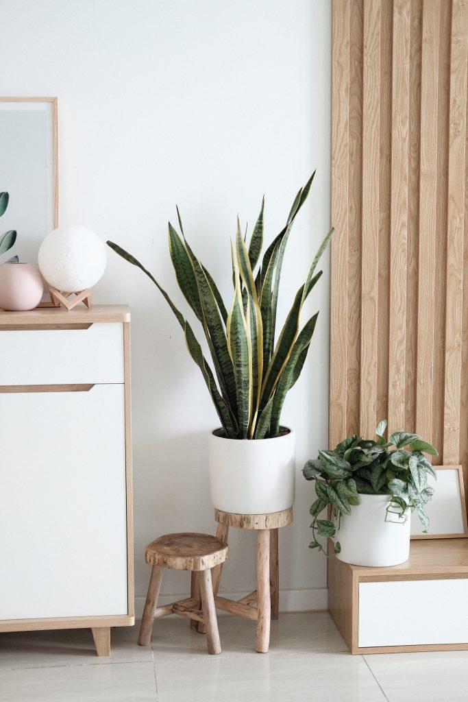 une décoration de salon style scandinave